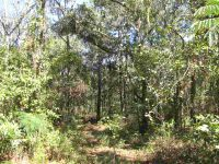 Home for sale: Vacant N.E. River Park Rd., Lee, FL 32059