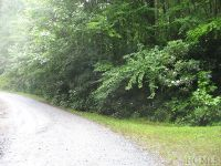 Home for sale: Tbd Andrews Park Rd., Glenville, NC 28736