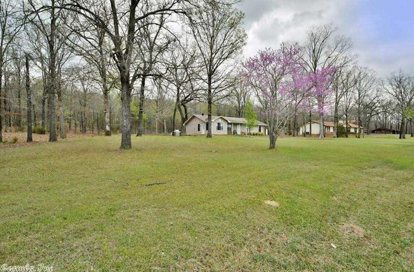 100 Roden Mill Rd., Conway, AR 72032 Photo 8