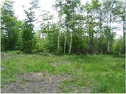 Home for sale: Lot 12 Off Us 41, Mohawk, MI 49950