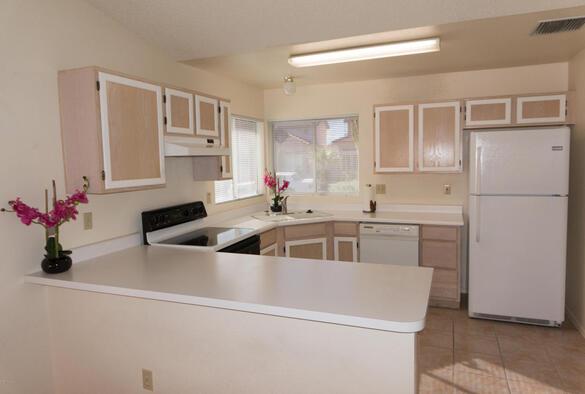 3571 W. Sky Ridge, Tucson, AZ 85742 Photo 12