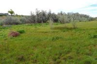 Home for sale: Parcel 8a Top Rd., Greenleaf, ID 83626