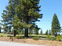 Home for sale: 234 Idylberry Dr., Lake Almanor, CA 96137