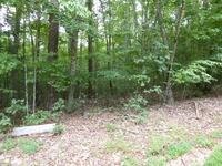 Home for sale: Lt11 Lance Mountain, Morganton, GA 30560