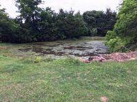 Home for sale: 0000 Fcr 404, Buffalo, TX 75840