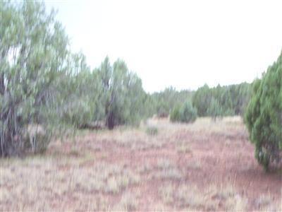 1805 W. Cumberland Parcel J Rd., Ash Fork, AZ 86320 Photo 13