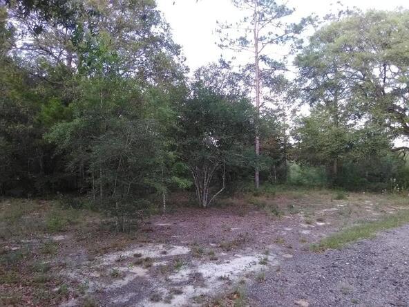 0000 Terzino Ln., Chipley, FL 32428 Photo 9