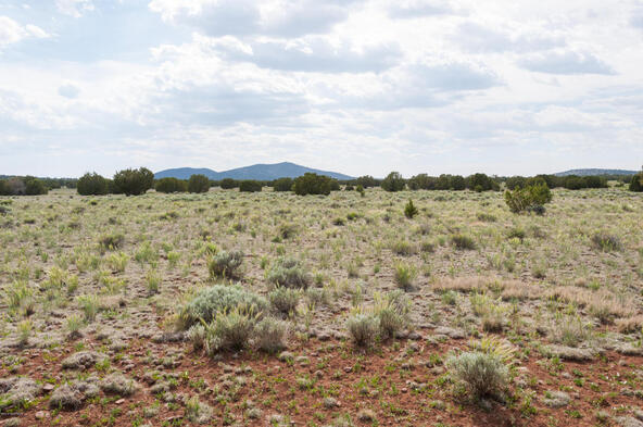 7508 N. Elk Run Trail, Williams, AZ 86046 Photo 56