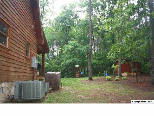 840 County Rd. 106, Mentone, AL 35984 Photo 11