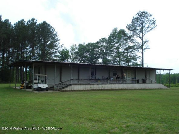 1024 Lost Creek Rd., Carbon Hill, AL 35549 Photo 6