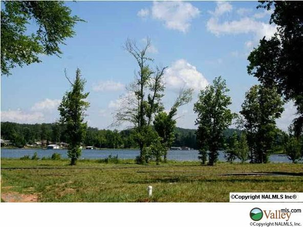 111 Lake Creek Dr., Guntersville, AL 35976 Photo 6