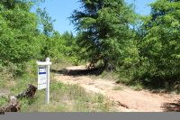 Home for sale: Parcel B Whittle Pond Rd., Williston, SC 29853