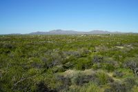 Home for sale: Lot 4 S. Hwy. 79, Tucson, AZ 85739