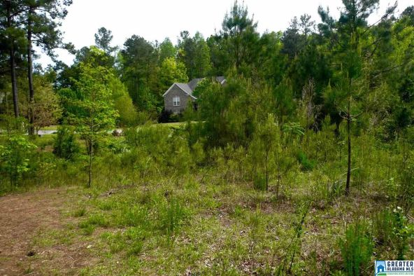500 Woodbridge Trc, Chelsea, AL 35043 Photo 7