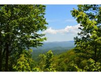 Home for sale: 1400 Walnut Mountain Rd., Hampton, TN 37658
