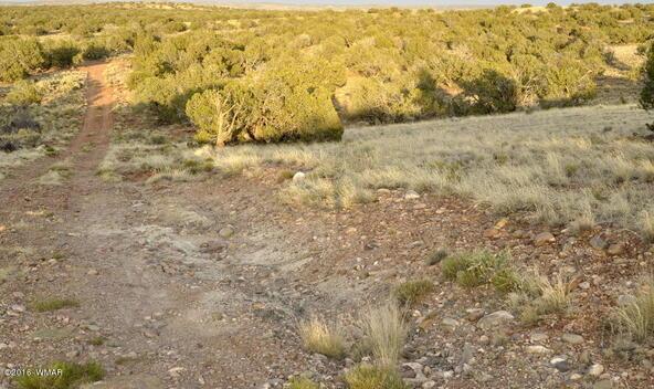 297 Woodridge Ranch, Concho, AZ 85924 Photo 4