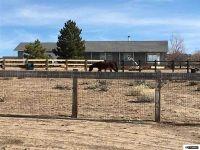 Home for sale: 2855 Esaw, Minden, NV 89423
