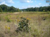 Home for sale: 1694-3 Hwy. 1 S., Lugoff, SC 29078