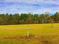 Home for sale: 152 North Valhalla Dr., Cordele, GA 31015