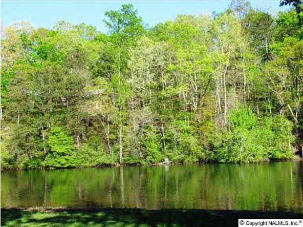 102 County Rd. 945, Mentone, AL 35984 Photo 8