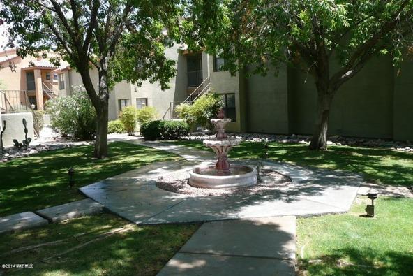 6651 N. Campbell, Tucson, AZ 85718 Photo 3