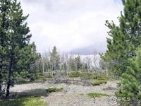 Home for sale: Diamond Peak, Livermore, CO 80536