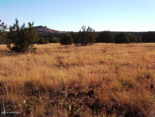130 Bunny View, Ash Fork, AZ 86320 Photo 10