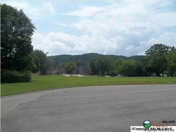 2 Carlton Rd., Scottsboro, AL 35769 Photo 7