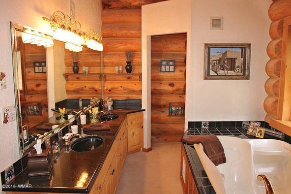 38721 State Route 373, Greer, AZ 85927 Photo 36