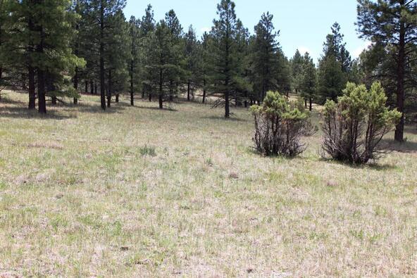 3252 N. Chickadee Trail, Flagstaff, AZ 86001 Photo 7