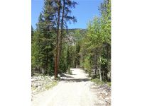 Home for sale: Forest Service Rd. 296, Nathrop, CO 81236