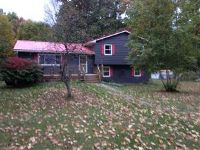 Home for sale: 423 Squirrel Hill Rd., Chenango Forks, NY 13746