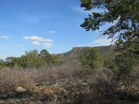 Home for sale: 43.98 Acres Metzger Dr., Ilfeld, NM 87538