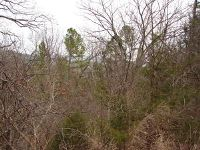 Home for sale: Tbd Shore Point Rd., Blue Eye, MO 65611