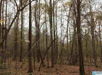 Home for sale: 0 Hwy. 76, Waverly, AL 36879