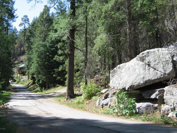 11081 E. Turkey Run, Mount Lemmon, AZ 85619 Photo 13