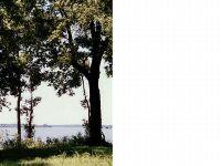 Home for sale: 13 Eagle Lake Shore Rd., Vicksburg, MS 39183