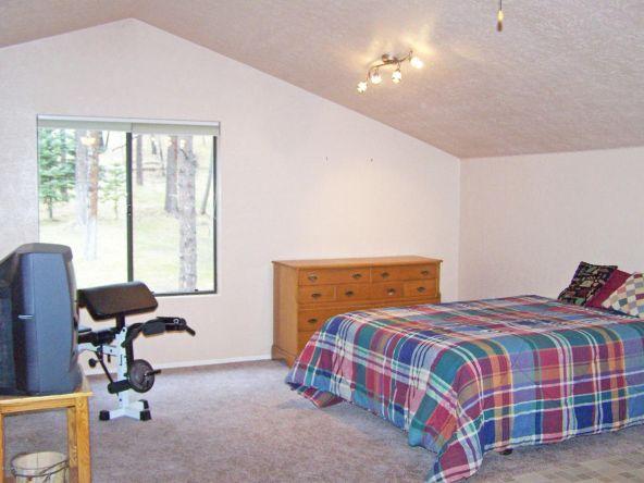 1 County Rd. 2153, Alpine, AZ 85920 Photo 41