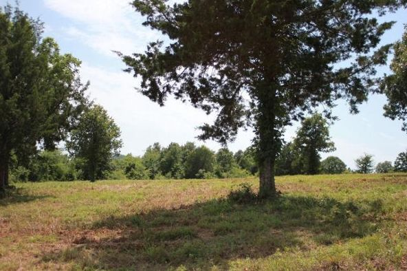 000 Rustic Ridge Dr., Norfork, AR 72658 Photo 4