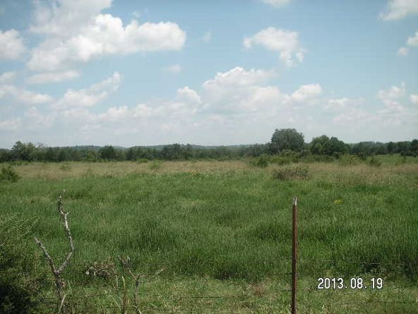 40 Acres M/L, Clarksville, AR 72830 Photo 7