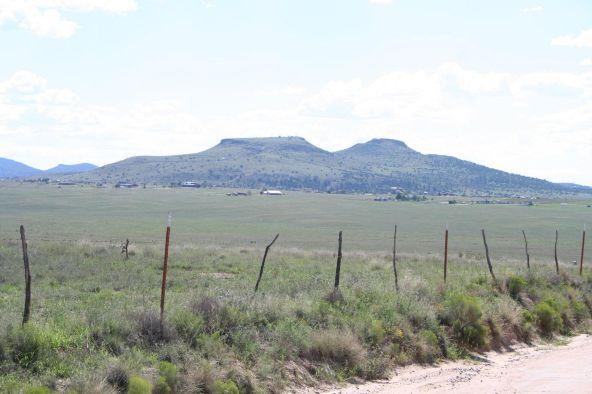 1165 S. Table Mountain Rd., Chino Valley, AZ 86323 Photo 22