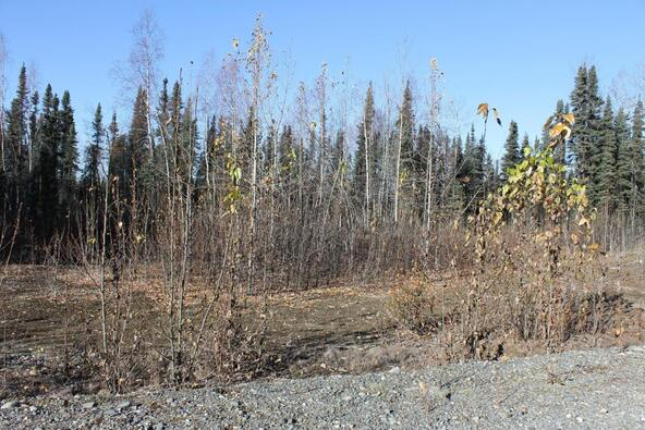 14837 E. Gold Miners Way, Willow, AK 99688 Photo 1