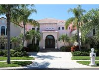 Home for sale: 1433 Jumana Loop, Apollo Beach, FL 33572