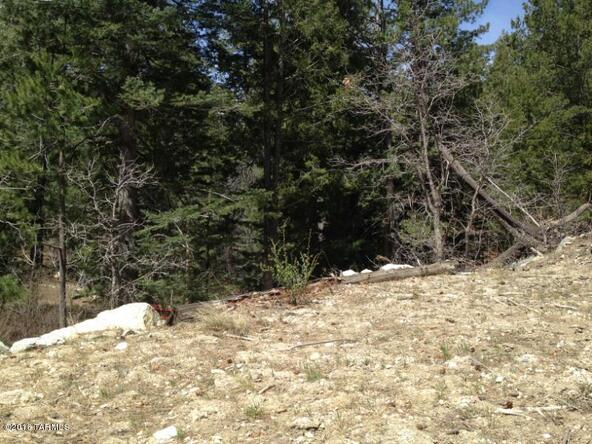 11081 E. Turkey Run, Mount Lemmon, AZ 85619 Photo 3