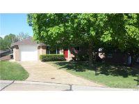 Home for sale: 813 Ann Lynn Ct., Saint Louis, MO 63125