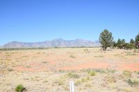 Home for sale: 9027 E. Hereford Rd., Hereford, AZ 85615
