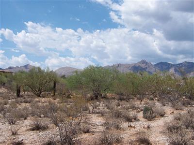 2420 Camino Miraval, Tucson, AZ 85718 Photo 2