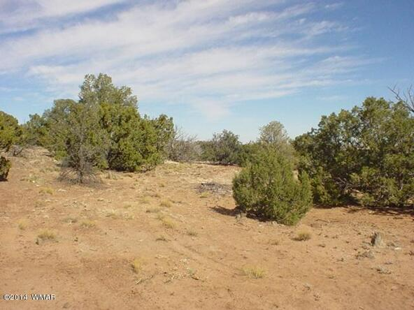 1b N. 8690, Concho, AZ 85924 Photo 15