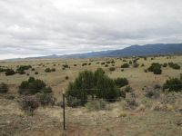 Home for sale: Tbd Hwy. 67, Florence, CO 81226