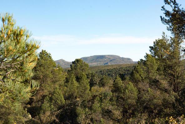 17955 W. Buckhorn Dr., Peeples Valley, AZ 86332 Photo 34
